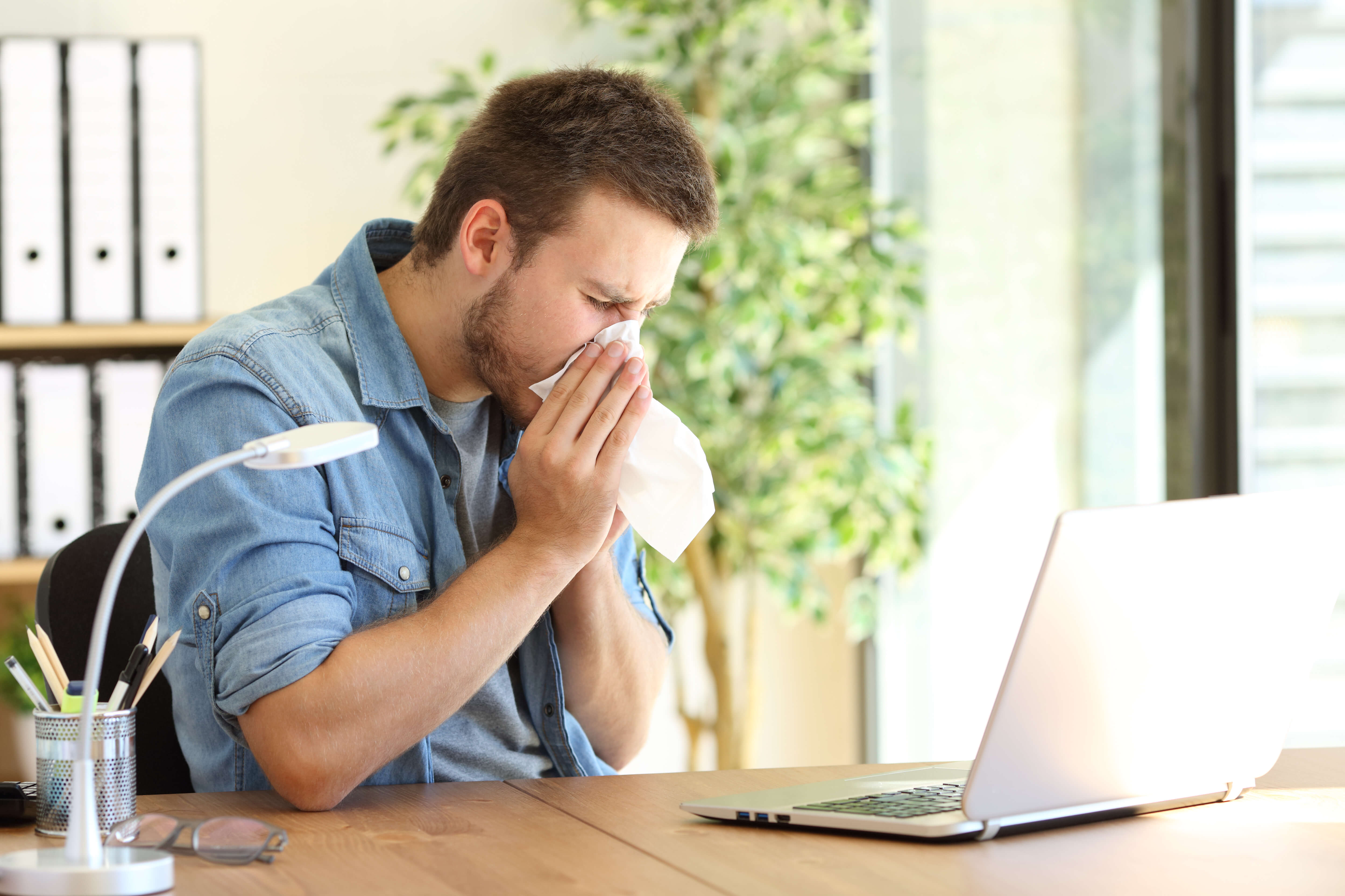Prevent Pollen and Allergies In Your Home | Rightime Home Services